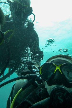 ProFun Divers: Underwater selfie