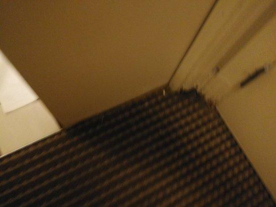 Bilde fra The Timbers Hotel