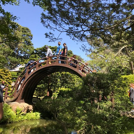 Japanese tea garden san francisco 2018 all you need to - Japanese tea garden san francisco ...