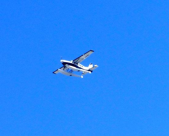 NYC Ferry: Bi plane taking off beside us