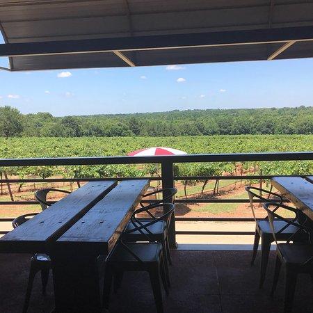 Bilde fra Kiepersol Vineyards, Winery & Distillery
