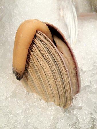 Hanare Authentic Japanese Cuisine: Ooasari