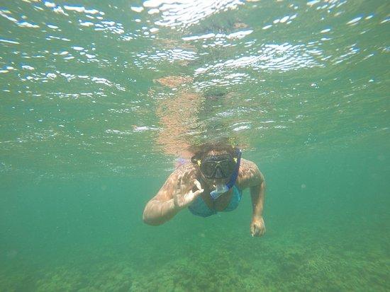 Padee Again Fishing Charters: Fishing and snorkeling tours