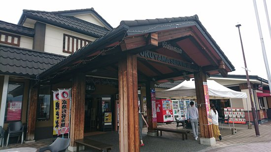 Fukuyama Service Area Down Line
