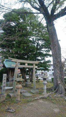Hofu, Japan: DSC_0024_large.jpg
