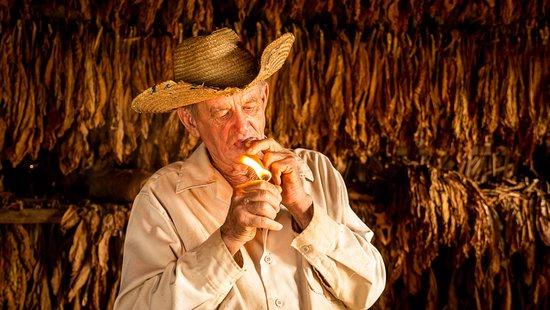 Riding Vinales: Rolling Cigar Cuba
