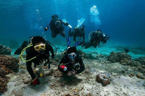 ION-C Dive Center