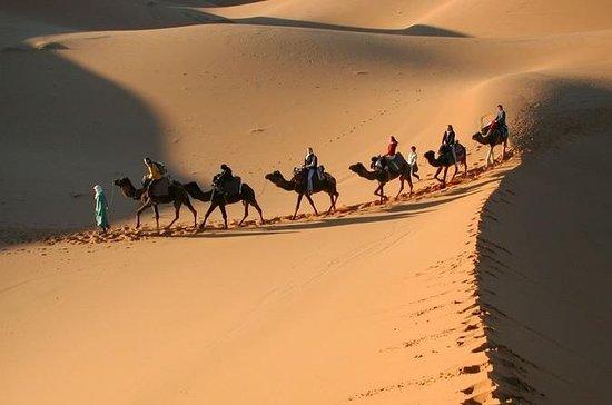 Excursion de 3jours dans le désert...