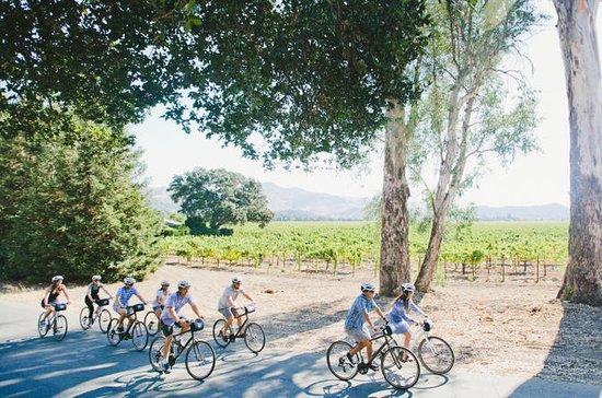 Napa Valley Bike and Wine Tour