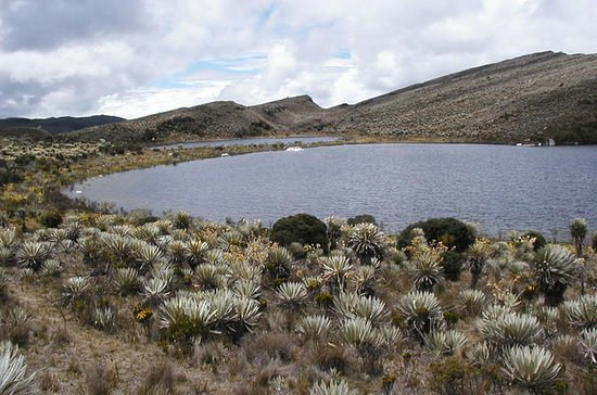 Full-Day Private Hike in Sumapaz...
