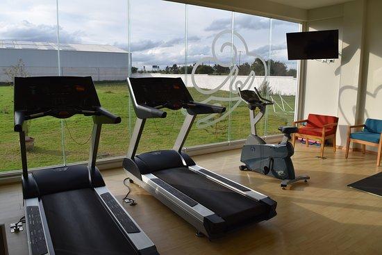 Hit Hoteles Aeropuerto Puebla: Gym