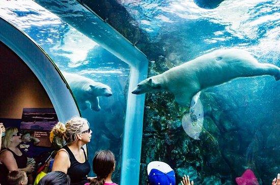 Assiniboine Park Zoo Admission...