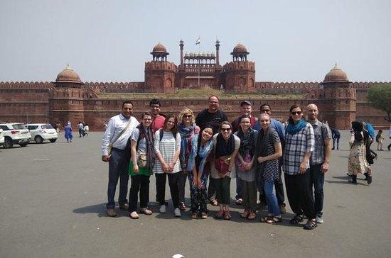 Delhi Day Tours (OLD DELHI OG NY...