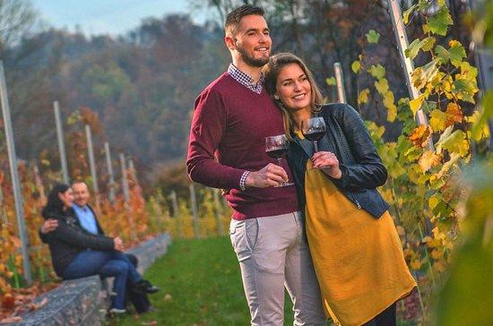 Ljubljana wine experience