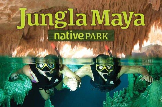 Jungla Maya Native Park  tour, a day ...