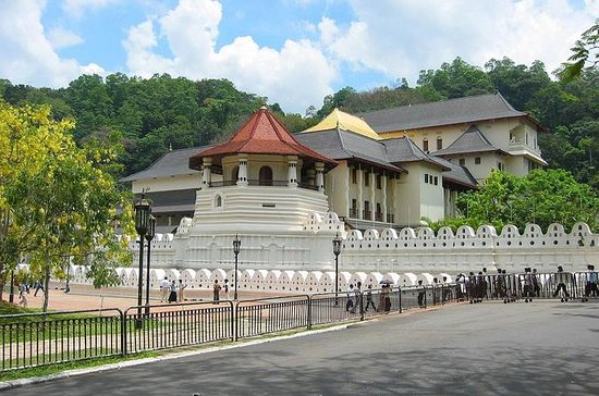 Private Day Tour To Kandy From...