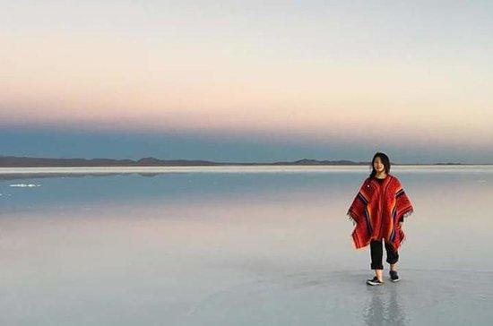 Full dag Uyuni Salt Flats med bus fra...