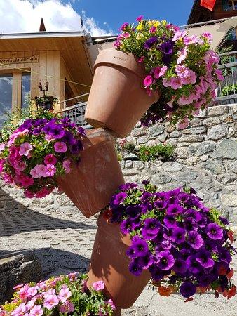 Schlans, สวิตเซอร์แลนด์: Garten und viele Blumen vor unserer Gartenbeiz