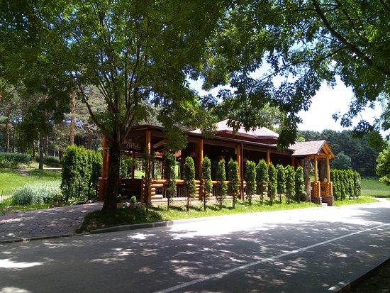 Cafe Sosnovaya Gorka: Сосновая горка