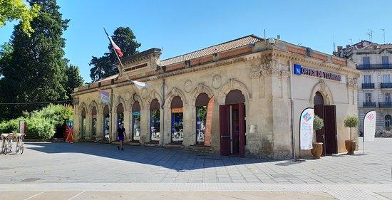 Le tomatologue picture of office de tourisme des - Office du tourisme de montpellier ...