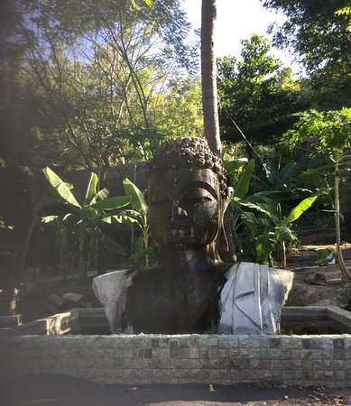 Ocean Prana Freediving & Yoga: Buddha in the garden