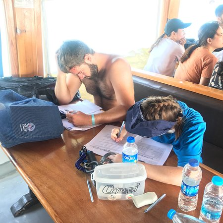 Фотография Elite Diving Centre