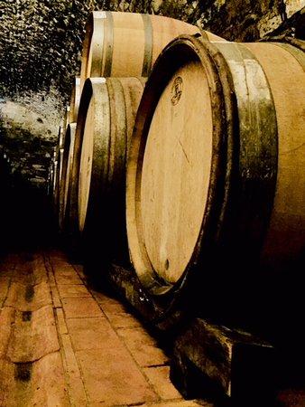 Enjoychianti: Wine cellar Visit