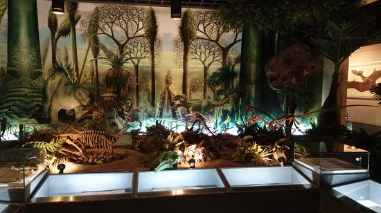 Geological Museum of China: Jurassic park