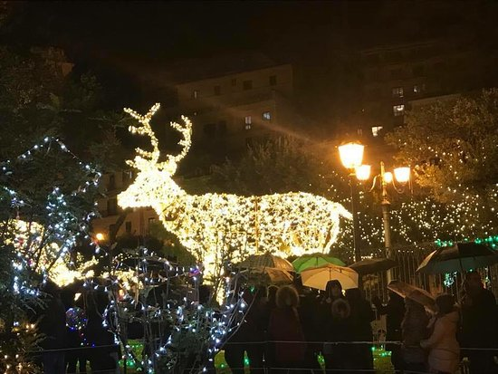 Centro Storico Salerno: CERVO