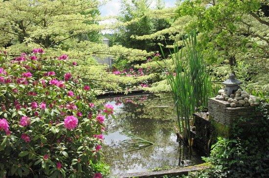Caumont-L'Evente, France: Petit appercu d'une des jardins...