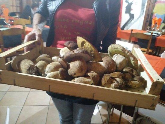 Stellanello, Italia: Merula