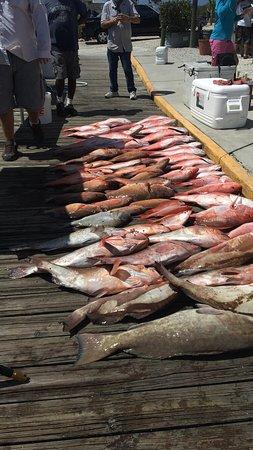 Fishin Fever III รูปภาพ