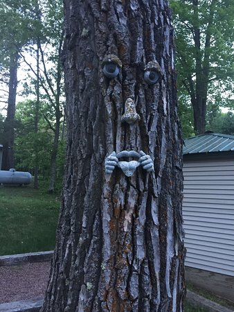 Iron River, WI: A welcoming friend!