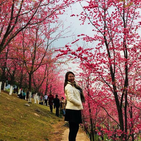 Dali University: photo9.jpg