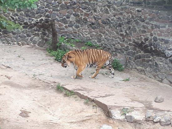 Foto de The Kiev Zoo