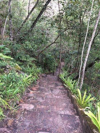 Cachoeira do Mosquito: Trilha bem feita e demarcada