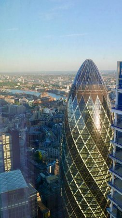 Duck & Waffle: Duck and waffle view