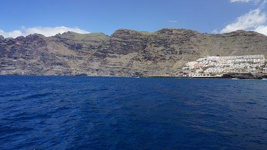 Freebird Catamaran : Los Gigantes mit Steilküste