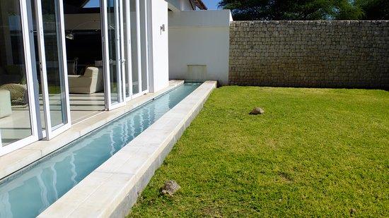 Emanya@Etosha: jardines
