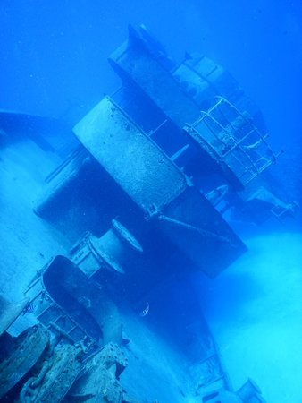 Kittiwake Shipwreck & Artificial Reef: another view of the top.