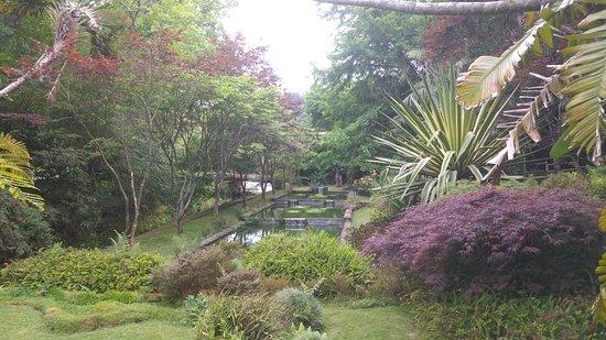 Parque Terra Nostra: the garden