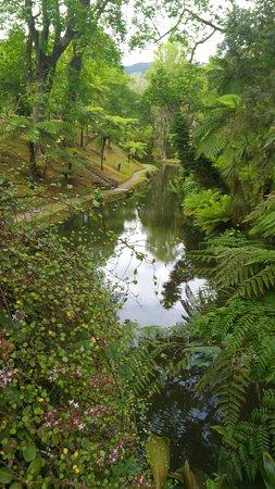 Parque Terra Nostra: the gardens
