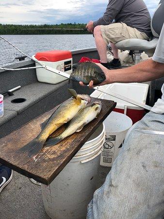 Joe's Inland Fishing照片