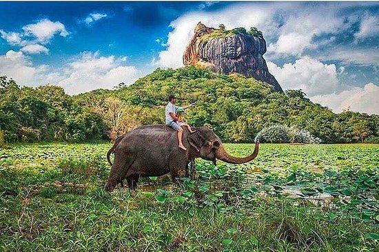Kandy Taxi Muthu Lanka Tours