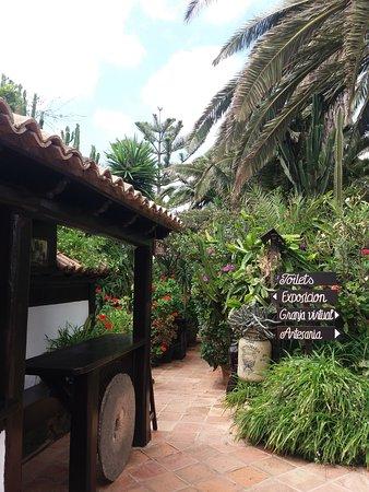 Betancuria: Jardins