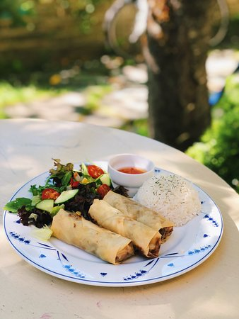 Gekkens Restaurant: Famous among locals and tourist! Springrolls with salad, sweet chilli sauce and rice or french f