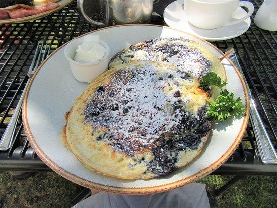 The Old Village Bakery: Blueberry filled pancakes & Greek yogurt
