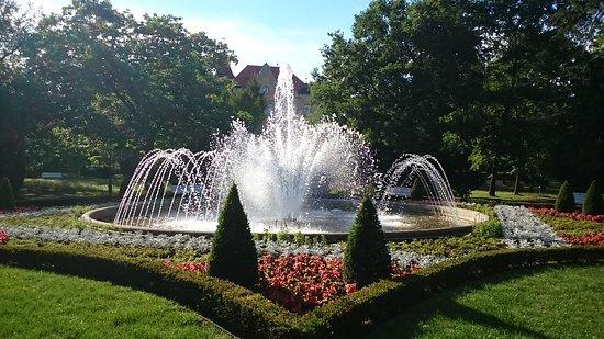 Freiberg - Albert Park