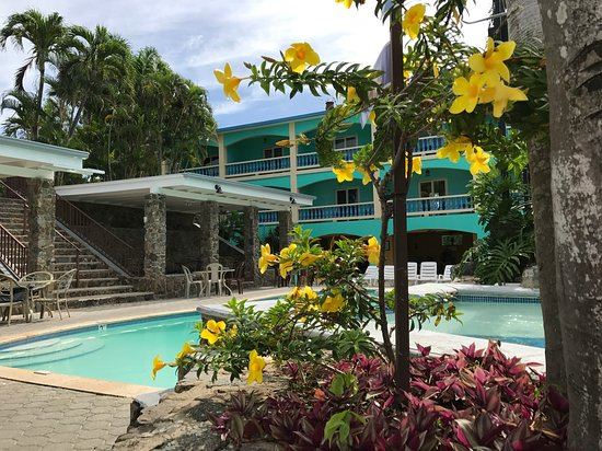 Lazy Parrot Inn: Peaceful lounge and pool area