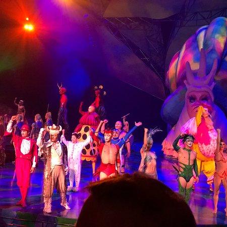 Treasure Island Las Vegas Nv Cirque Du Soleil
